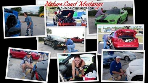Nick Nicholas Ford Inverness >> Nature Coast Mustangs Desktop Wallpapers